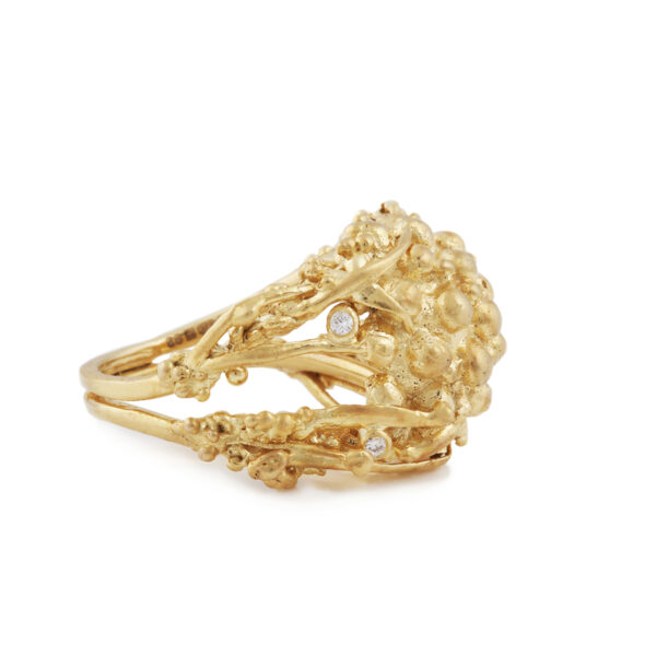 Hay Gold and Diamond Ring