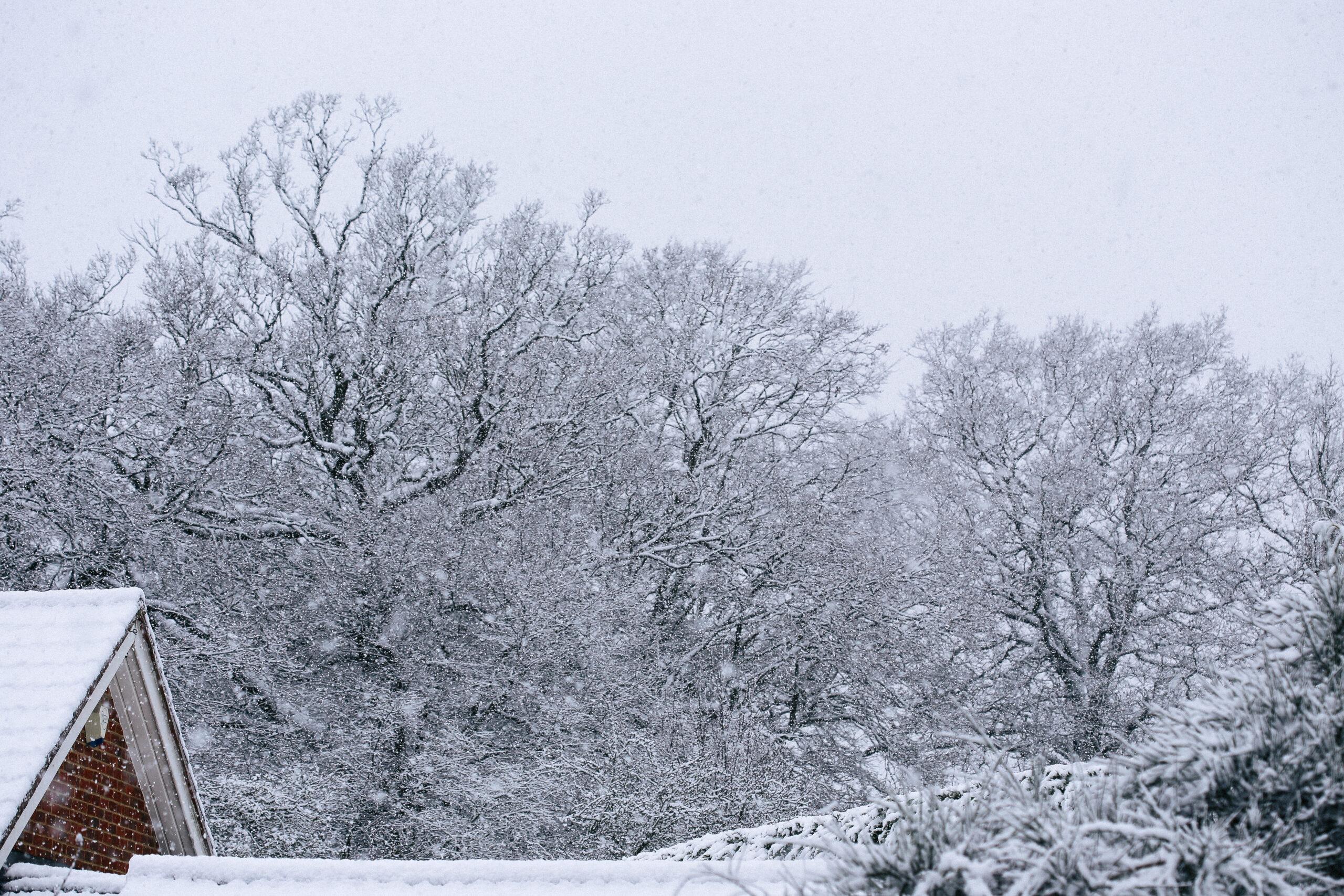 Breathtaking Snowy Day in England